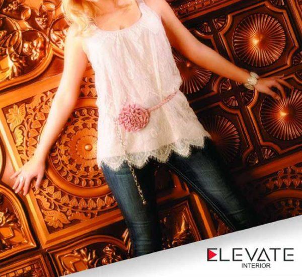 Elevate-Interior-Ceiling-Tiles-Brochure_1